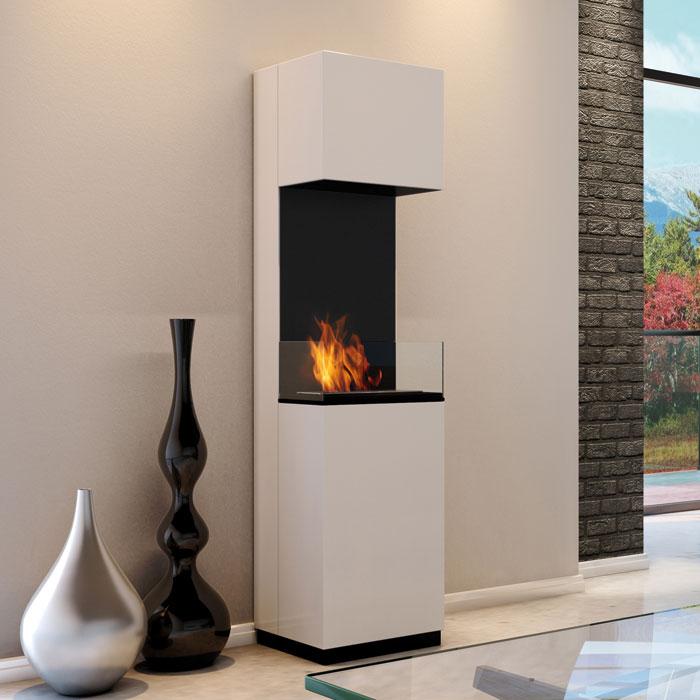 po le bio thanol lequel choisir cheminee au. Black Bedroom Furniture Sets. Home Design Ideas